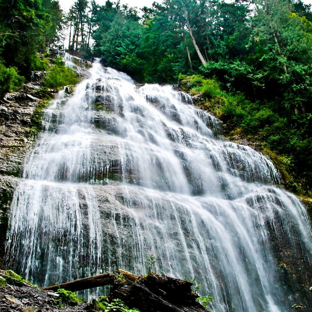 agassiz harrison mills pathfinder camp resorts local attractions things to do